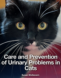 Care and Prevention of Urinary Problems in Cats - Susan McGovern